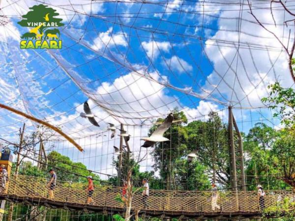 Khu nuoi duong cac loai chim _ Combo Vinpearl Land & Safari