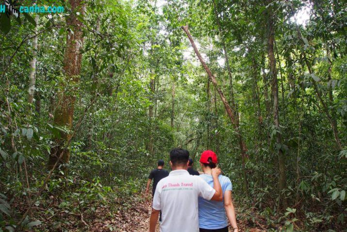 Trekking cung đường xuyên rừng