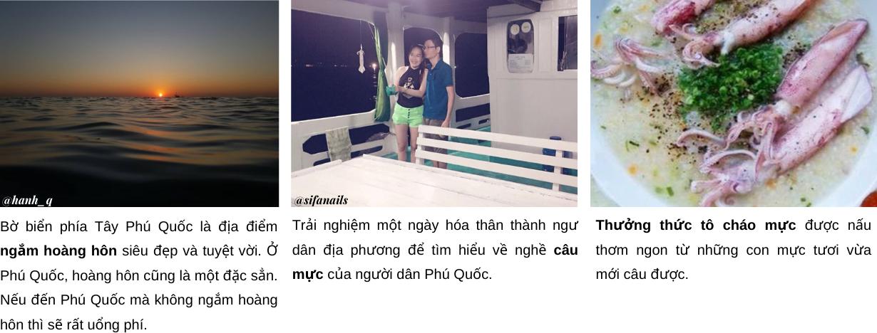 Tour cau muc _ Tour Ngắm Hoàng Hôn & Câu Mực Đêm