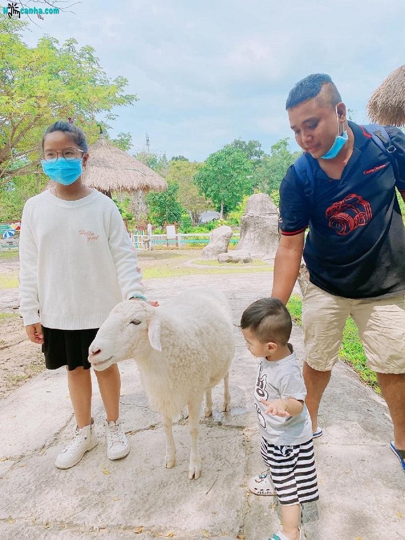 Gia đình có trẻ em nên đi Safari