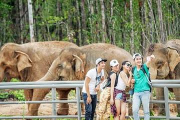 vuon thu safari phu quoc co gi hicanha _ Vườn thú Safari Phú Quốc có gì?
