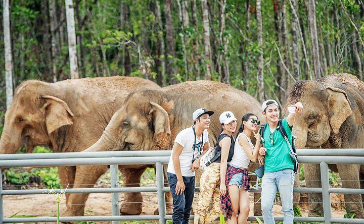 Vườn thú Safari Phú Quốc có gì?